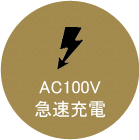 AC100V 急速充電